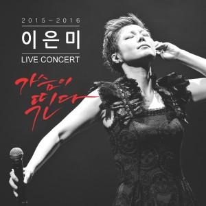 이은미 Live 앨범 - 가슴이 뛴다 [REC,MIX,MA] Mixed by 김대성